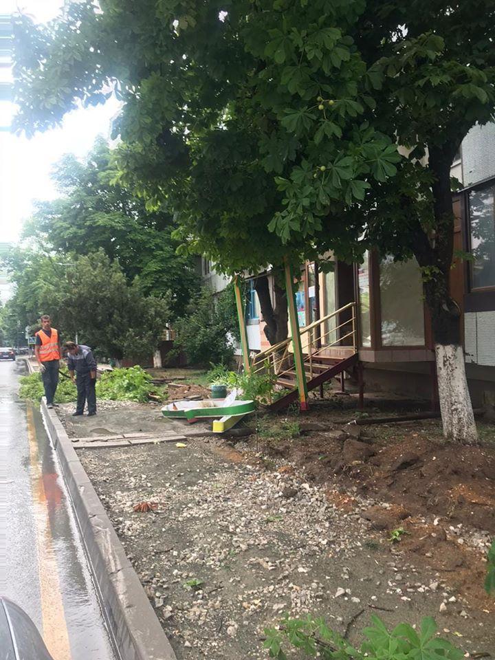Стихия повалила в Саках более 30 деревьев, повредив крыши