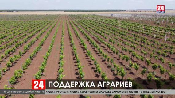 Меры поддержки и модернизации сельского хозяйства обсудили в Крыму