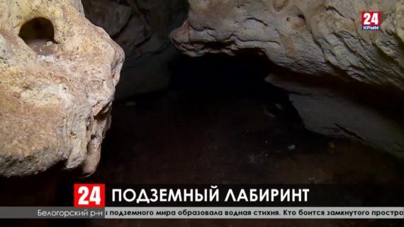 Кости носорогов, бизонов, верблюдов и оленей находят учёные в пещере Таврида