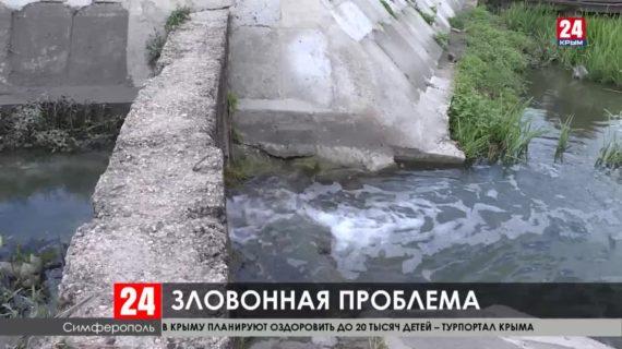 Рейд по водным артериям и набережным Крыма
