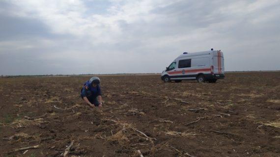 Более 100 килограммов боеприпасов времён ВОВ обнаружили на востоке Крыма