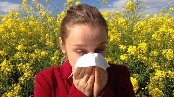 Какой город Крыма вошёл в ТОП по количеству аллергиков