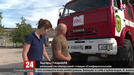 Как спасти крымский лес?