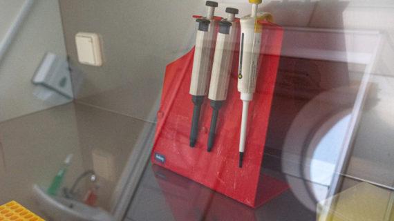 В Крыму зарегистрировали ещё 18 заболевших коронавирусом