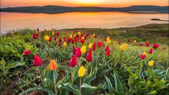 Заповедники Крыма: как получить пропуск на экскурсии