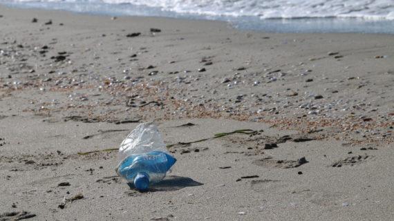 Пляжи Крыма приведут к единому стандарту