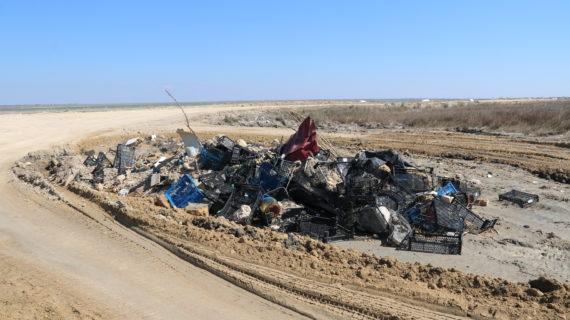 7000 человек приняли участие в экологической акции «Чистый Крым»