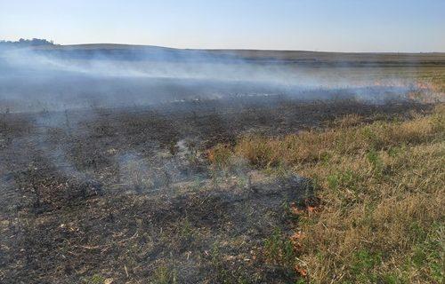 Под Симферополем сгорело 1,5 Га сухой травы