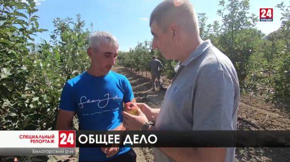 Миллиарды бюджетных рублей направлено на нужды сельчан полуострова