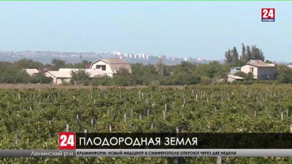 В Ленинском районе аграрии подводят итоги весеннего посевного сезона