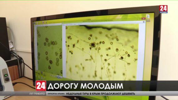 В крымских поселках увеличилось количество молодых специалистов со средним и высшим образованием