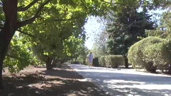 В Армянске появится сквер отдыха для горожан