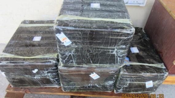 В Крым попытались провезти больше 100 кг подозрительных устриц