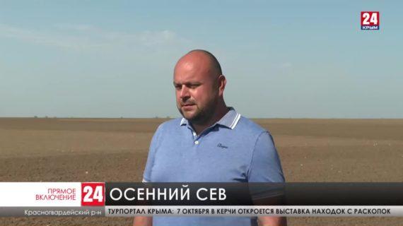 В Крыму планируют засеять 500 тысяч гектаров