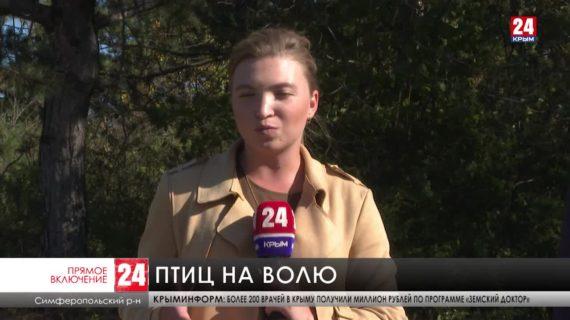 Полторы сотни фазанов сегодня выпустили возле Симферопольского водохранилища