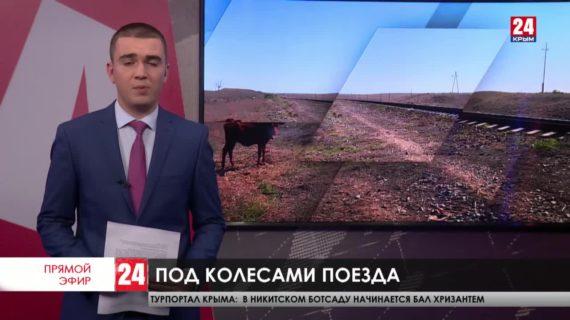 Новости восточного Крыма. Выпуск от 16.10.20