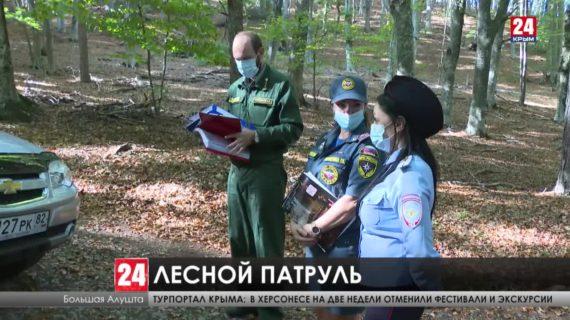 Больше 100 природных пожаров зарегистрировали в Крыму с начала года