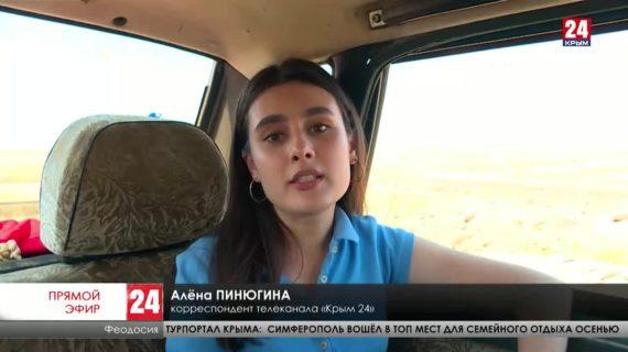 В селе Узловое под Феодосией жители жалуются на плохую дорогу