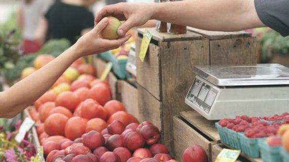 Как крымская погода негативно повлияла на урожай фруктов