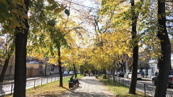 Синоптики обещают похолодание в Крыму с 18 октября