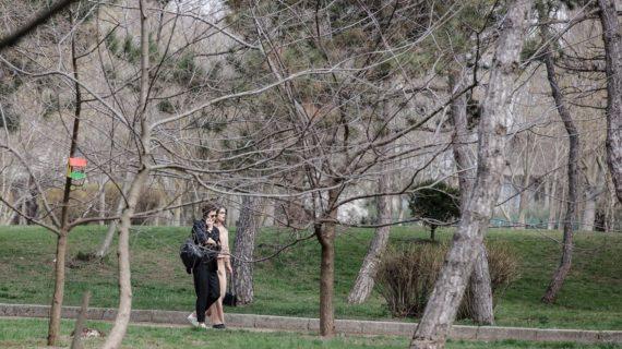 В парке Гагарина в Симферополе при реконструкции сохранят все зелёные зоны