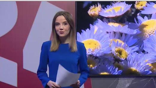 Ботанический сад в Никите готовят к открытию «Бала хризантем»