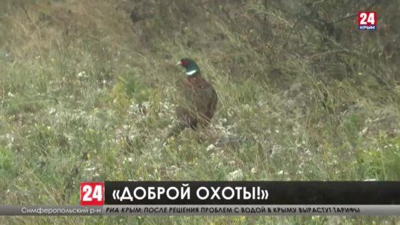 Как правильно охотиться в крымских угодьях?