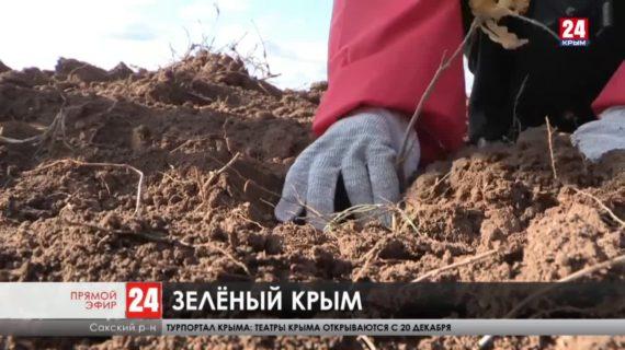 Новости Евпатории. Выпуск от 27.11.20