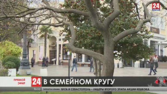 Во время зимних праздников ялтинские кафе и рестораны будут работать до 22-х часов