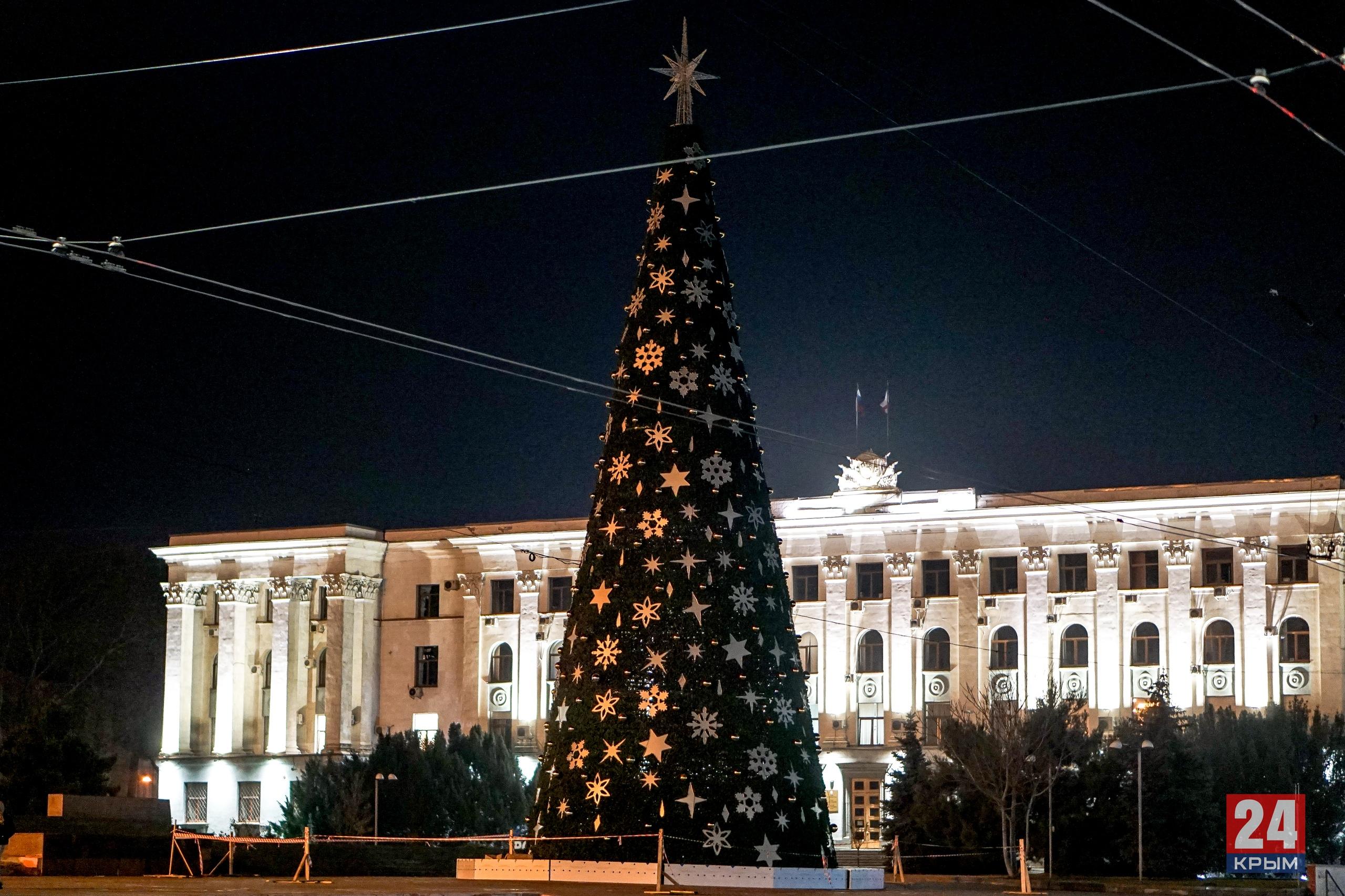 Ёлочные базары 2020 в Крыму и Севастополе: Где купить ёлку на Новый год, адреса