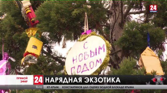 Новости Ялты. Выпуск от 24.12.20