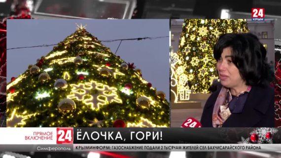 В Симферополе зажгли огни главной ёлки Крыма
