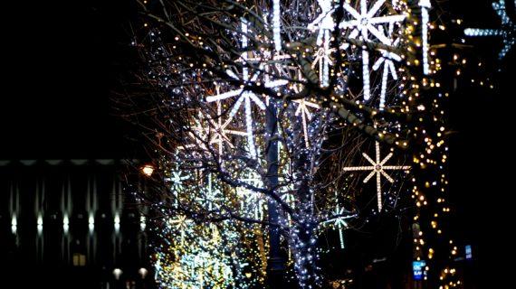 Более 80 тысяч человек планируют приехать в Ялту на новогодние праздники