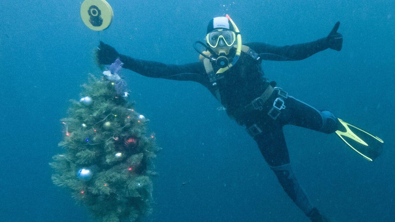 В Крыму на дне Чёрного моря установили новогоднюю ёлку