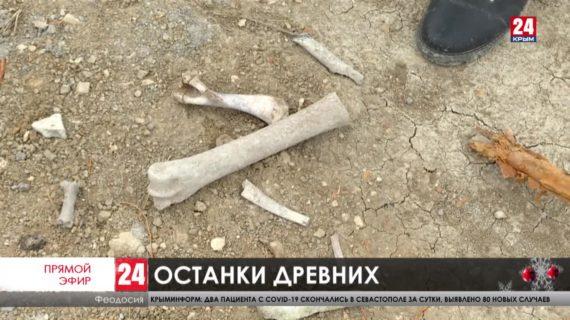 В Феодосии во время строительства водовода обнаружили человеческие останки и многолетнюю кладку