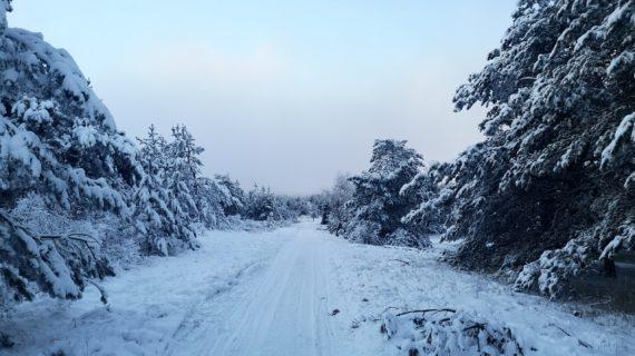 Пользователи соцсетей опубликовали фотографии заснеженного плато Ай-Петри
