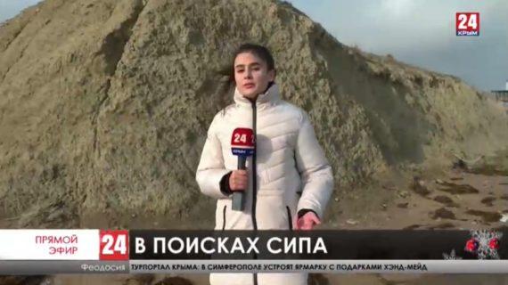 В одной из феодосийских бухт туристы обнаружили белоголового сипа