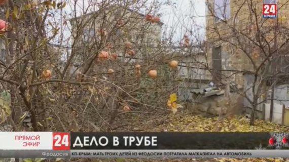 Жители феодосийского массива «Степной» полторы недели сидят без воды