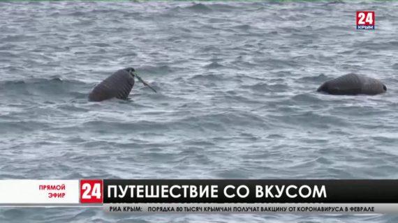 Новости Ялты. Выпуск от 27.01.21
