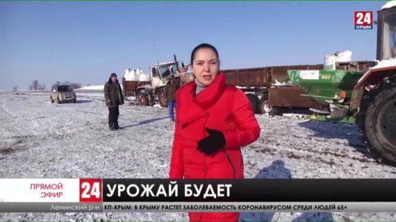 Новости Керчи. Выпуск от 20.01.21