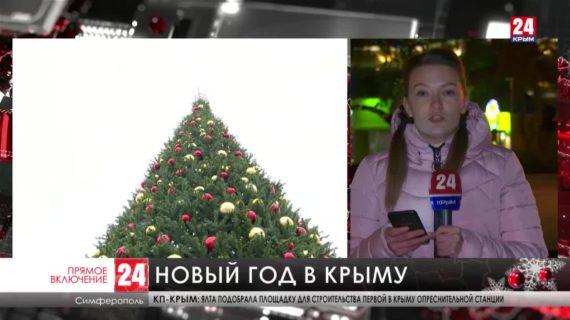 Почти 240 тысяч туристов встретили новогодние праздники в Крыму
