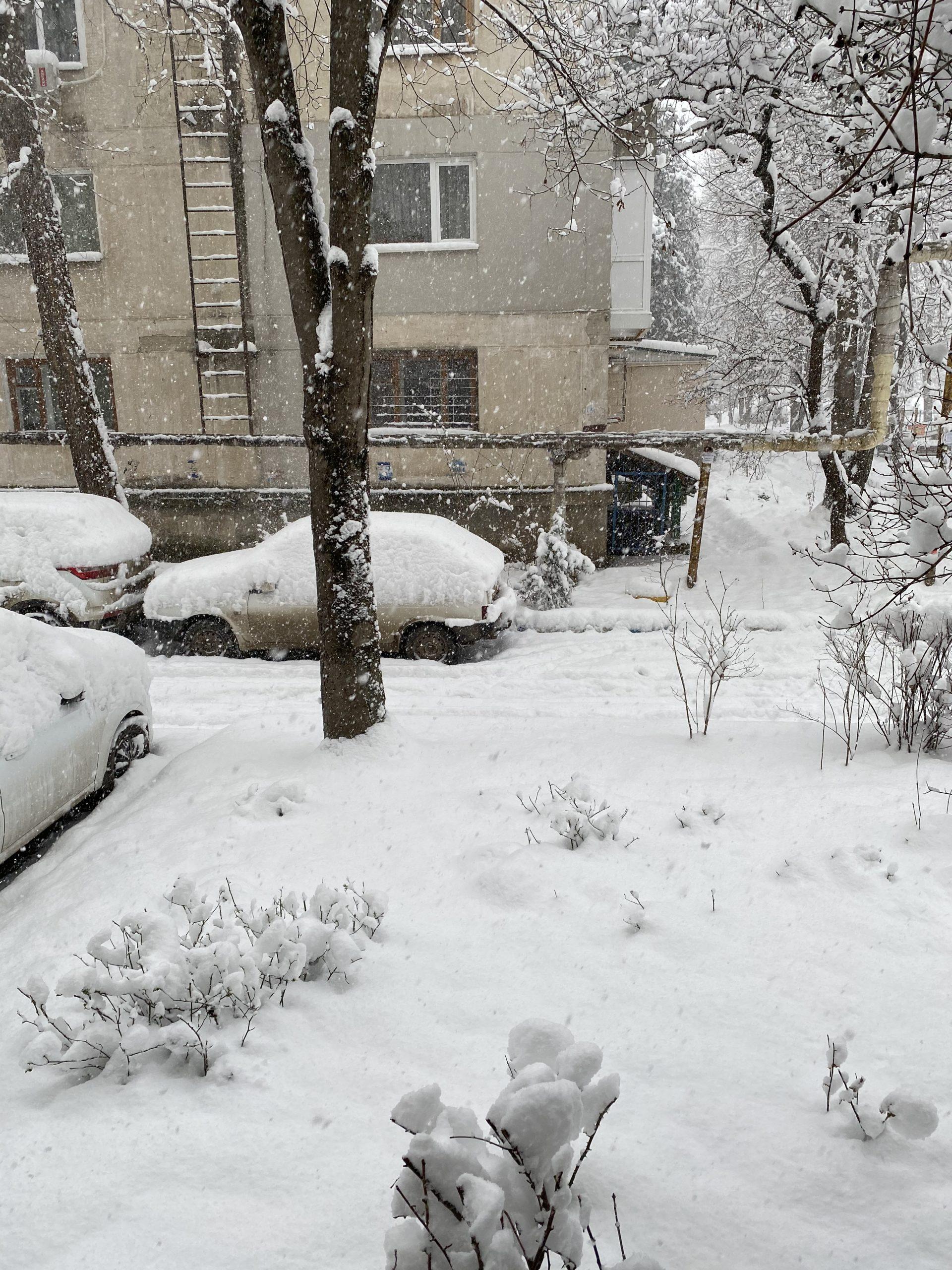 """""""Замело, дорога – зеркало"""": В соцсетях крымчане жалуются на работу коммунальщиков"""