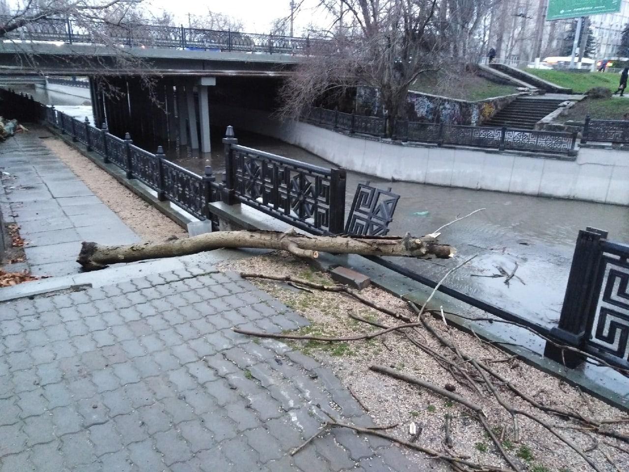 На набережной Симферополя ветка сломала чугунное ограждение
