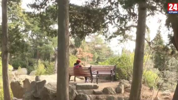 О чём договорились власти Крыма с общественностью по ситуации с Форосским парком
