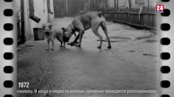 «Эпоха с Сергеем Минчиком». Выпуск № 82