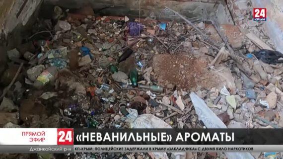 Чьи трубы и кто отремонтирует канализацию? На севере Крыма жители Заречного задыхаются от неприятного запаха