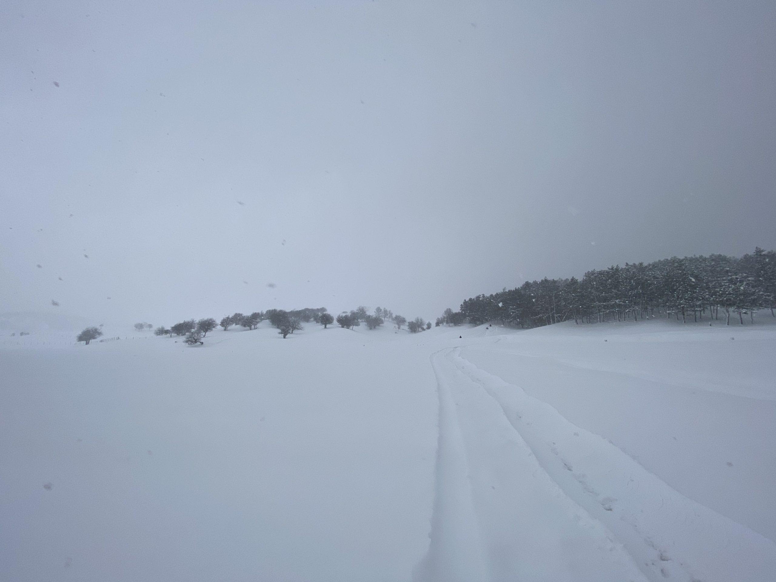 Проезд на плато Ай-Петри со стороны Ялты и Бахчисарая закрыли до улучшения погодных условий