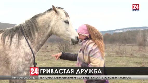 Крымская семья отреклась от цивилизации и посвятила себя зелёному туризму и общению с животными