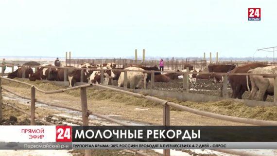 Останется ли Крым в лидерах по надоям молока в Южном федеральном округе?