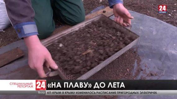 Ни туристов, ни развлечений. Как проходит межсезонье в курортных сёлах Крыма?